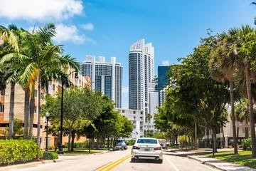 Tree Services in Sunny Isles